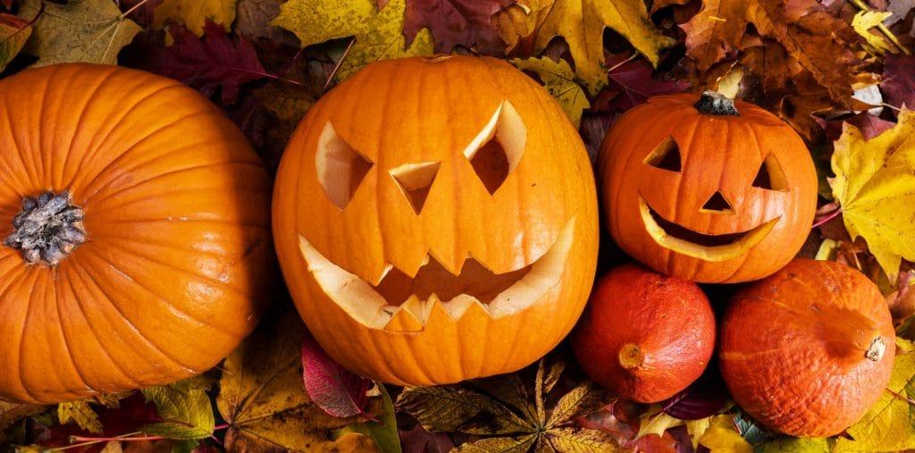 Halloween pumpkins, carved jack-o-lantern in fall leaves